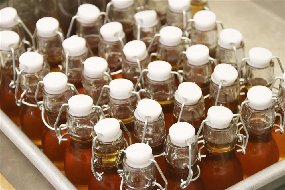 Bottled syrup collected by Lanigan students